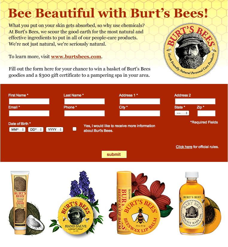 Project: SweepsStakes - Burt's Bees